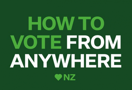 Expat Voting Guide