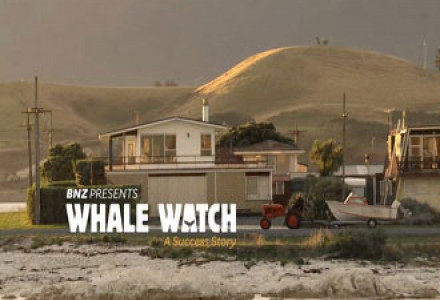 "BNZ ~ ""The Whale Watch Story"""