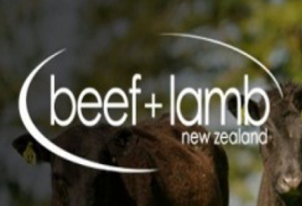 Beef + Lamb New Zealand website