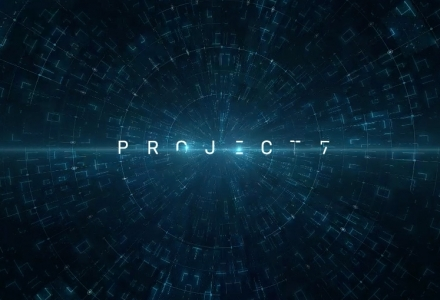 Project 7 Meta-game