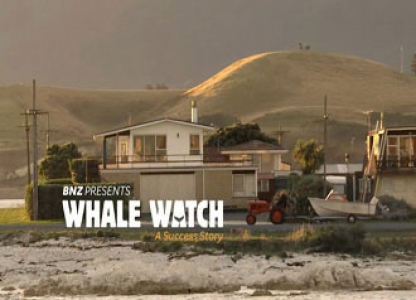 BNZ wale watch cover image